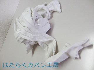 IMG_0012 文字入り .jpg