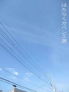 IMG_2665 文字入り .jpg