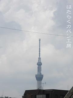 IMG_3610 文字入り .jpg