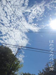IMG_7573 文字入り .jpg